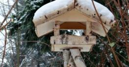 Das Vogelhaus sicher auf Ständer befestigen