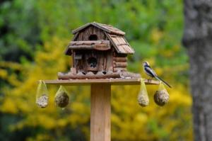 Vogelhaus am Ständer befestigen