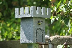 Vogelhaus selber bauen - Lochdurchmesser