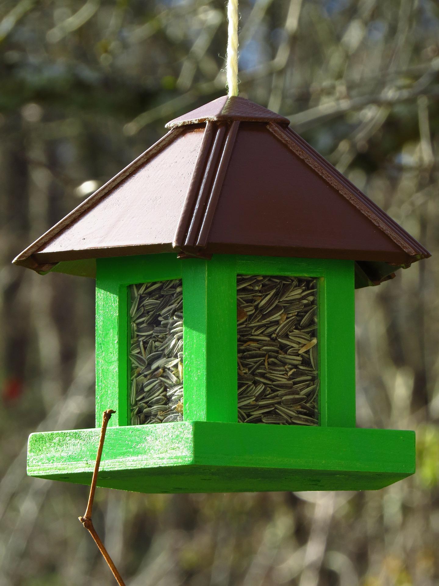 vogelhaus selber bauen mit kindern - vogelhaus-selberbauen.de