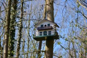 Wie sollte man sein Vogelhaus am Baum befestigen