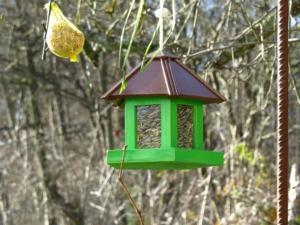 Wie sollten Sie das Vogelhaus aufhängen
