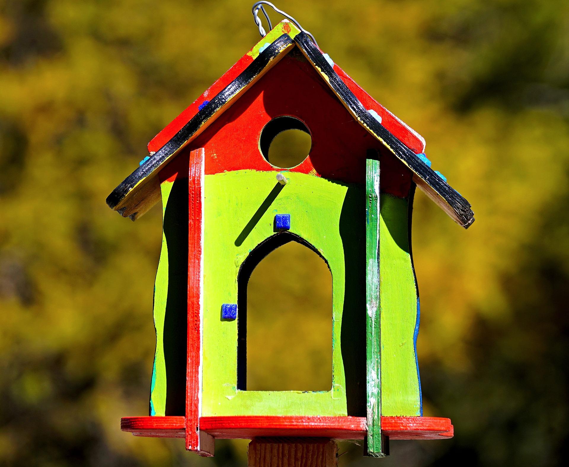 Vogelhaus Piep Show. Unsere Zeigt Wie Sie Ein Tolles Vogelhaus Zur ...